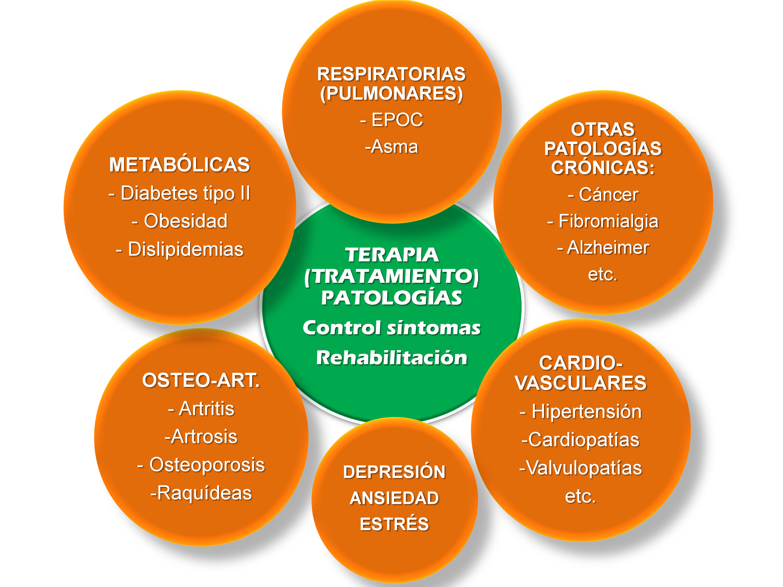 bloqueantes neuromusculares esteroideos