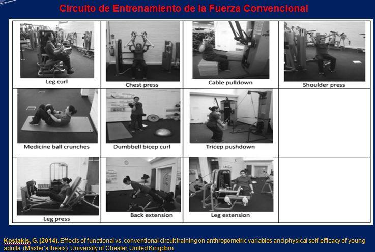 Libro Schemi Avvolgimenti Motori Elettrici Pdf : Circuito de entrenamiento funcional pdf educacion fisica